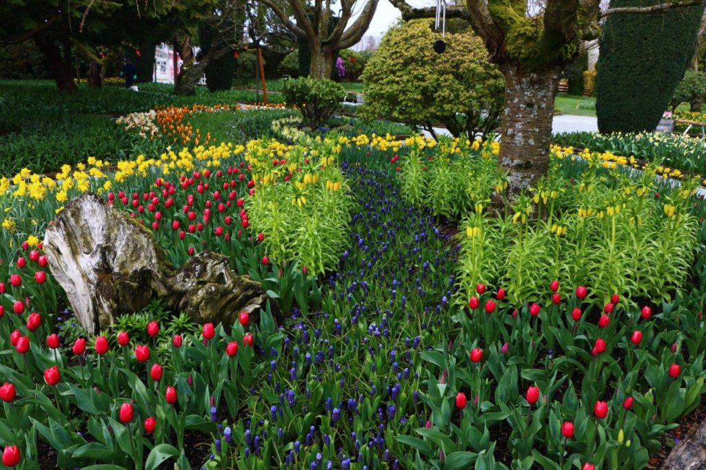 Photography: Roozengaarde Display Garden – Mt Vernon, WA – Vozian Art